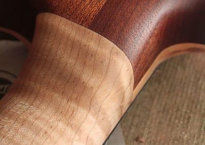 Chris-Larkin_ASAD-7-String-Custom-Special_130