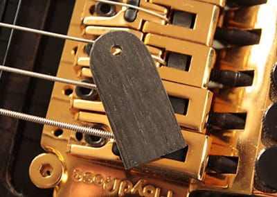 Chris-Larkin_ASAD-7-String-Custom-Special_172