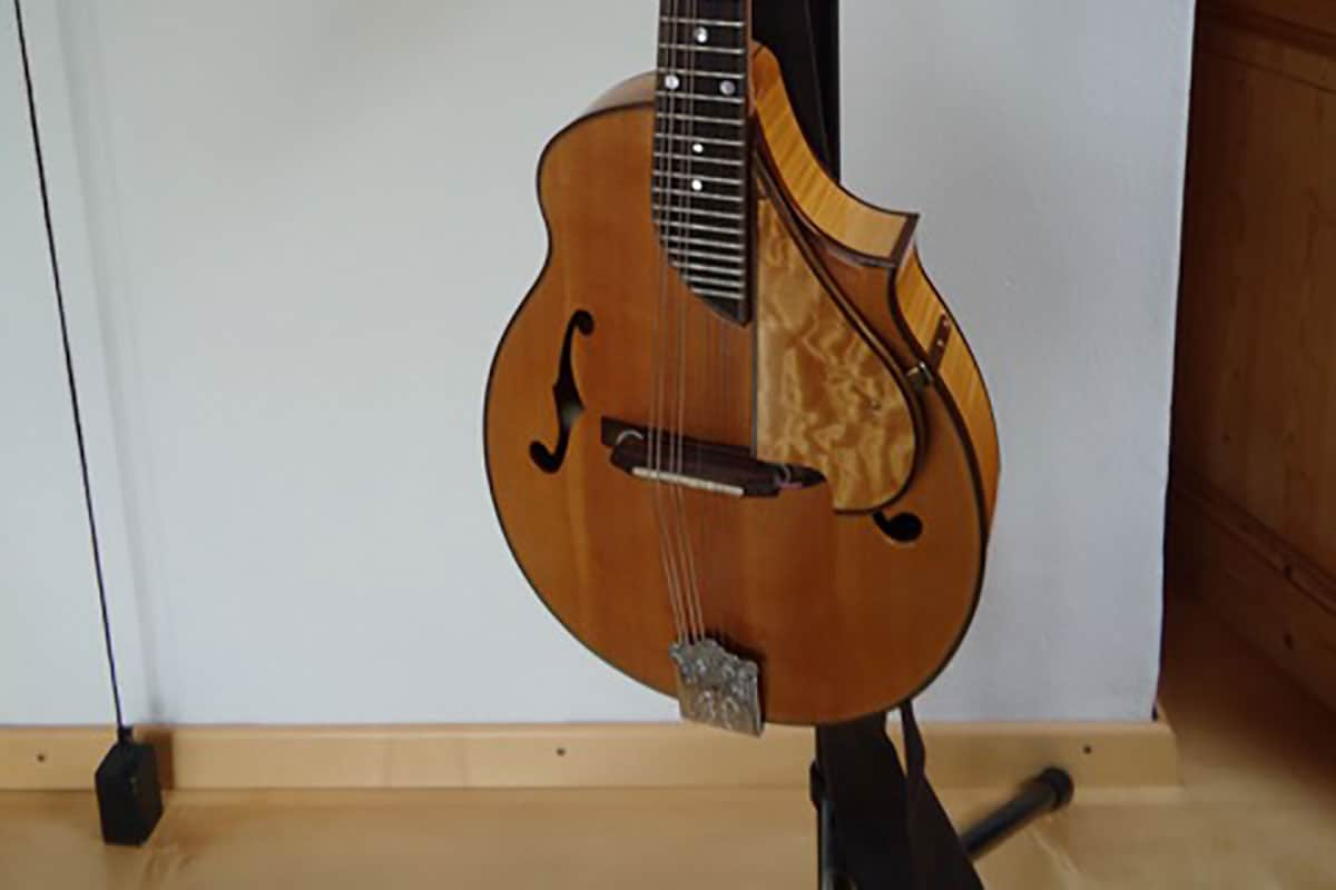 Chris Larkin archtop mandolin
