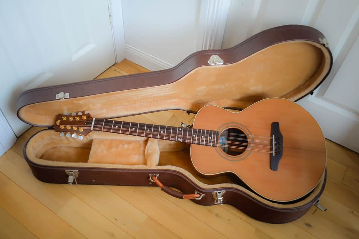 Chris Larkin guitar bouzouki