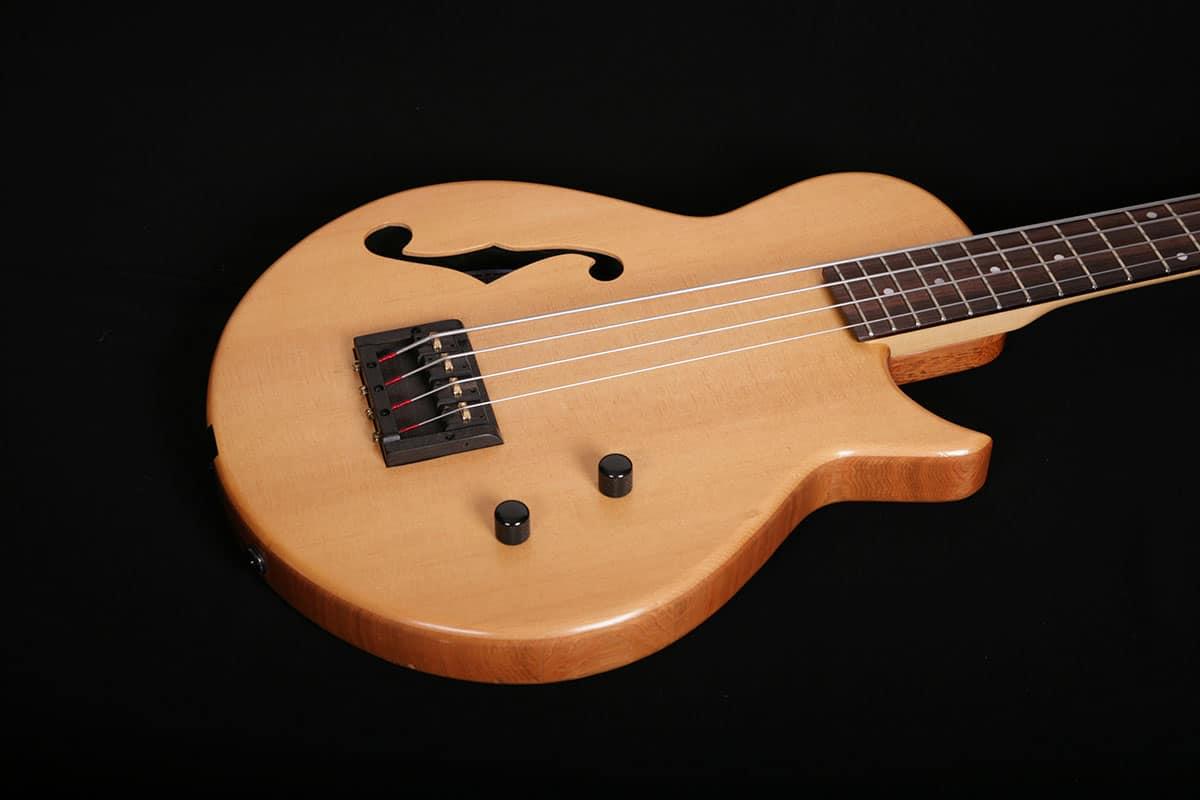bass-acoustic_01