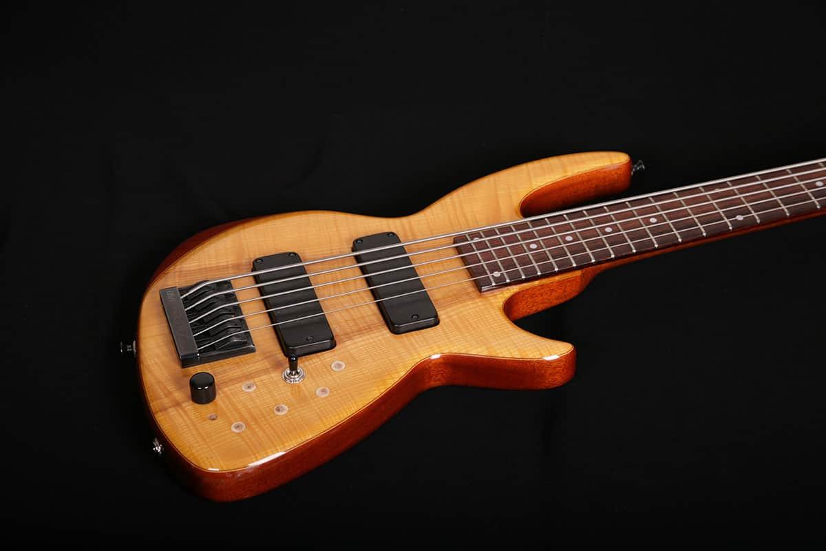 bass-electric_08